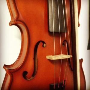Violin, Viola, Cello, String Bass Lessons